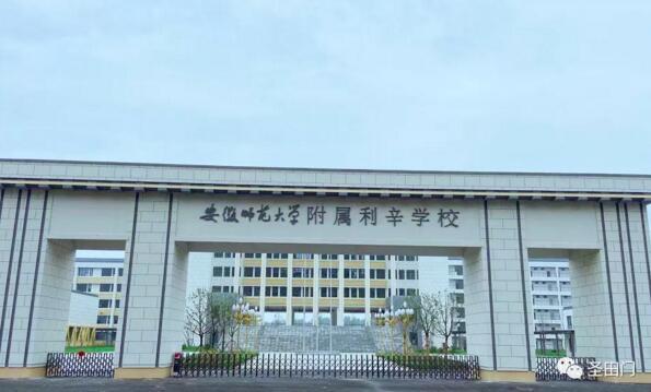 安徽师范大学附属利辛学校